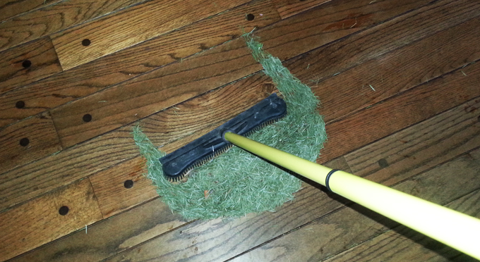 Clean Up Pine Needles Indoors Simply Good Tips