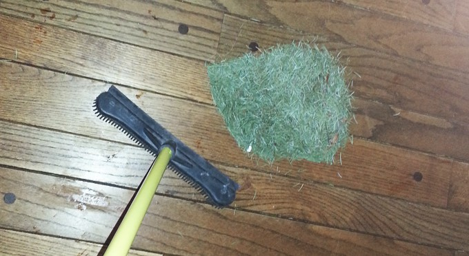Sweeping up pine needles